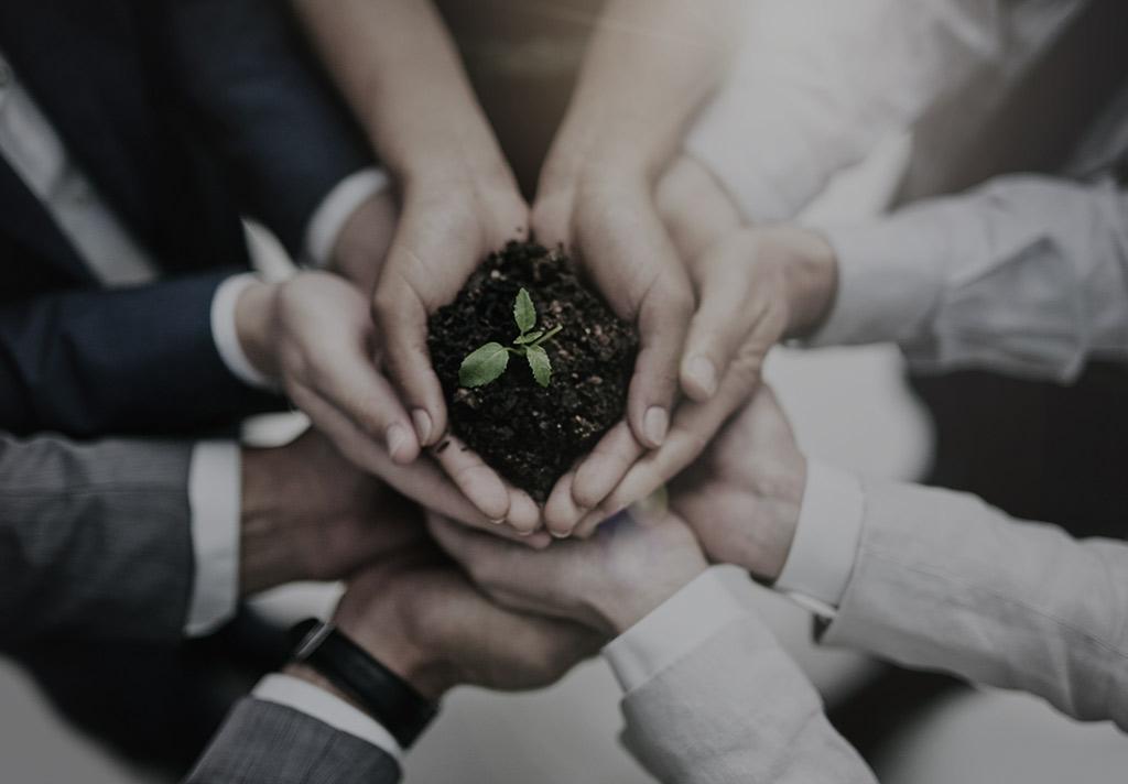 effective lead nurturing